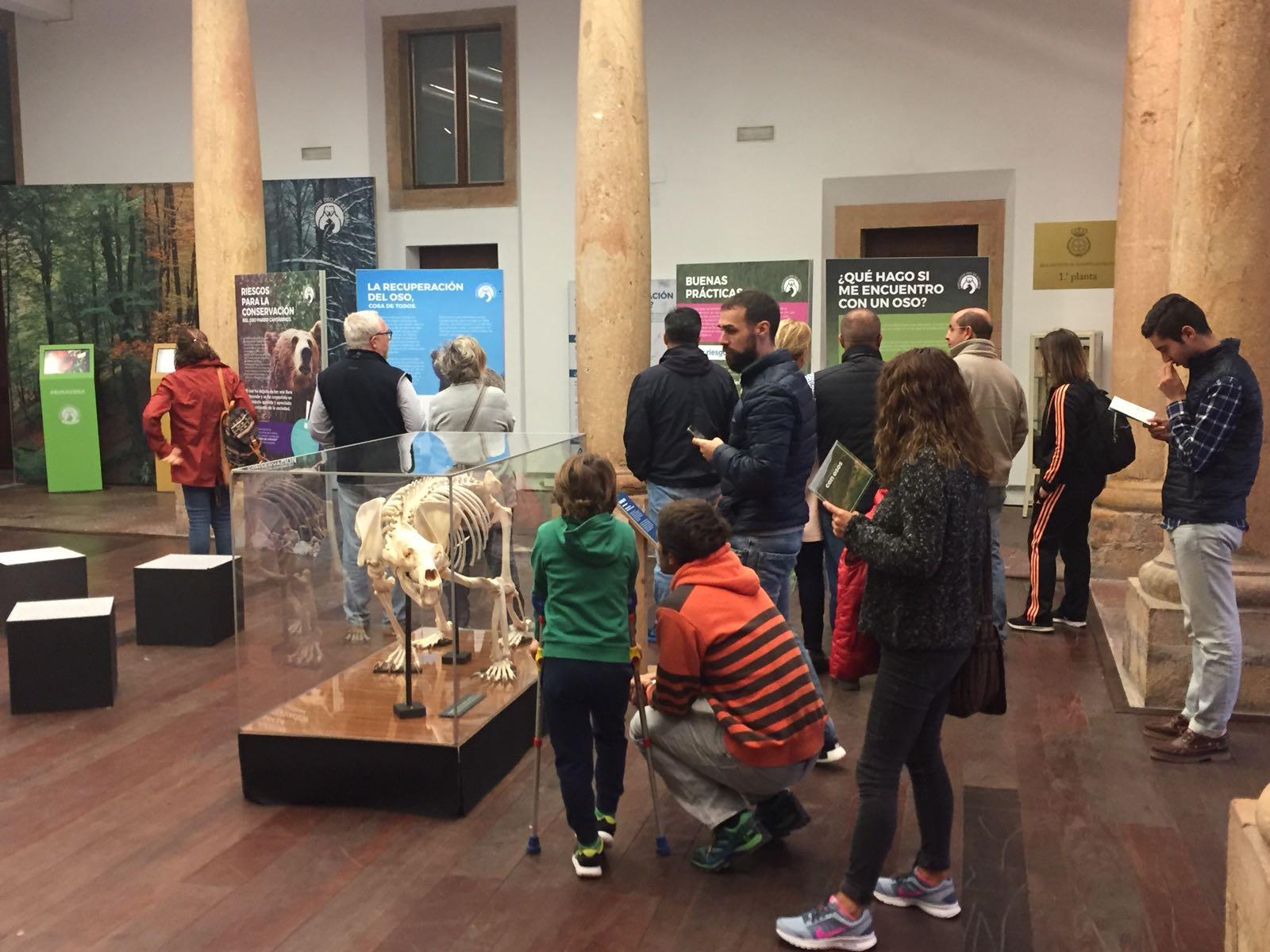 Más de 1.700 personas visitan la exposición 'Osos', en menos de una semana, en el Palacio del RIDEA