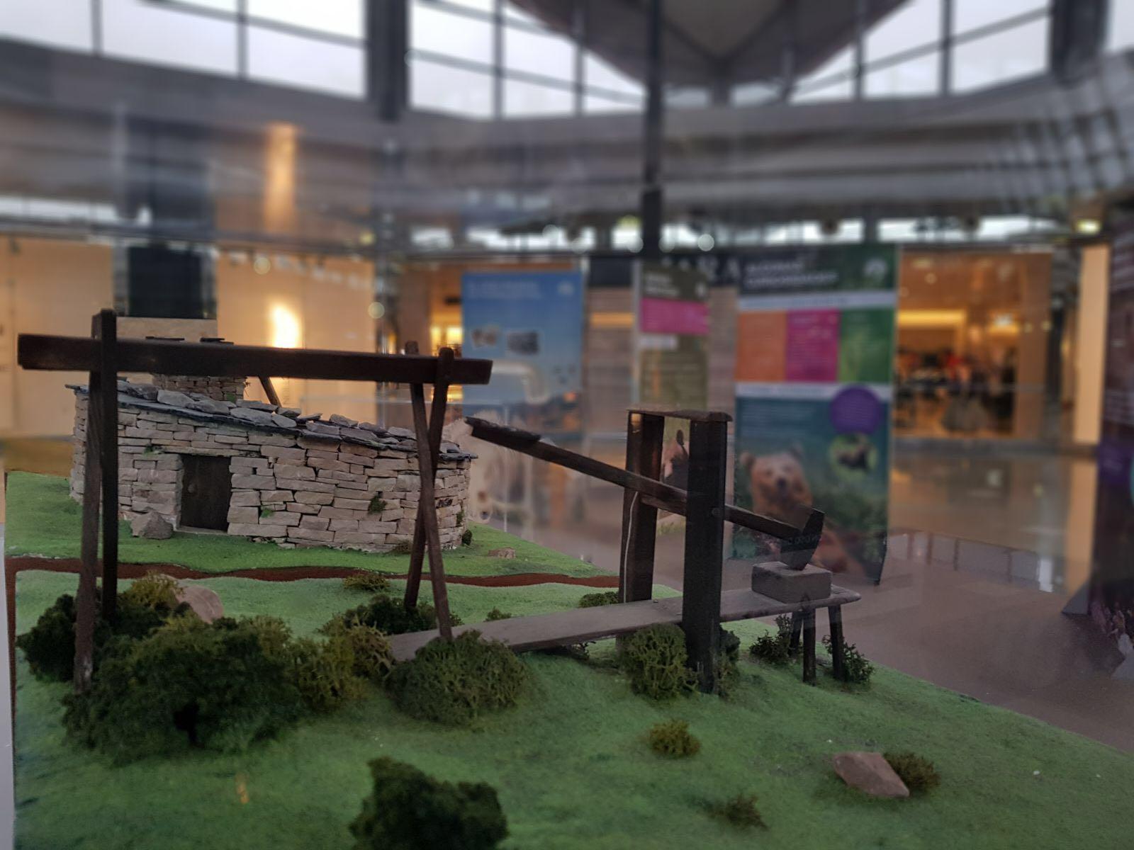 Unas 30.000 personas visitan la exposición 'Sigue la huella del oso' en intu Asturias