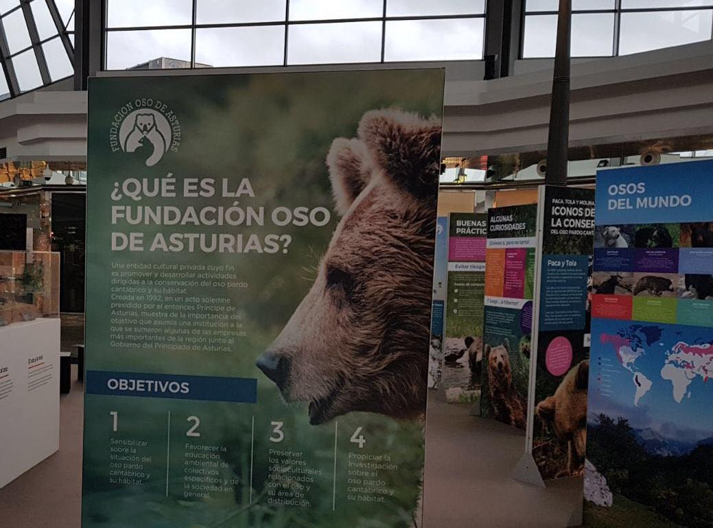 Reconocimiento nacional a la colaboración de Intu Asturias con la FOA