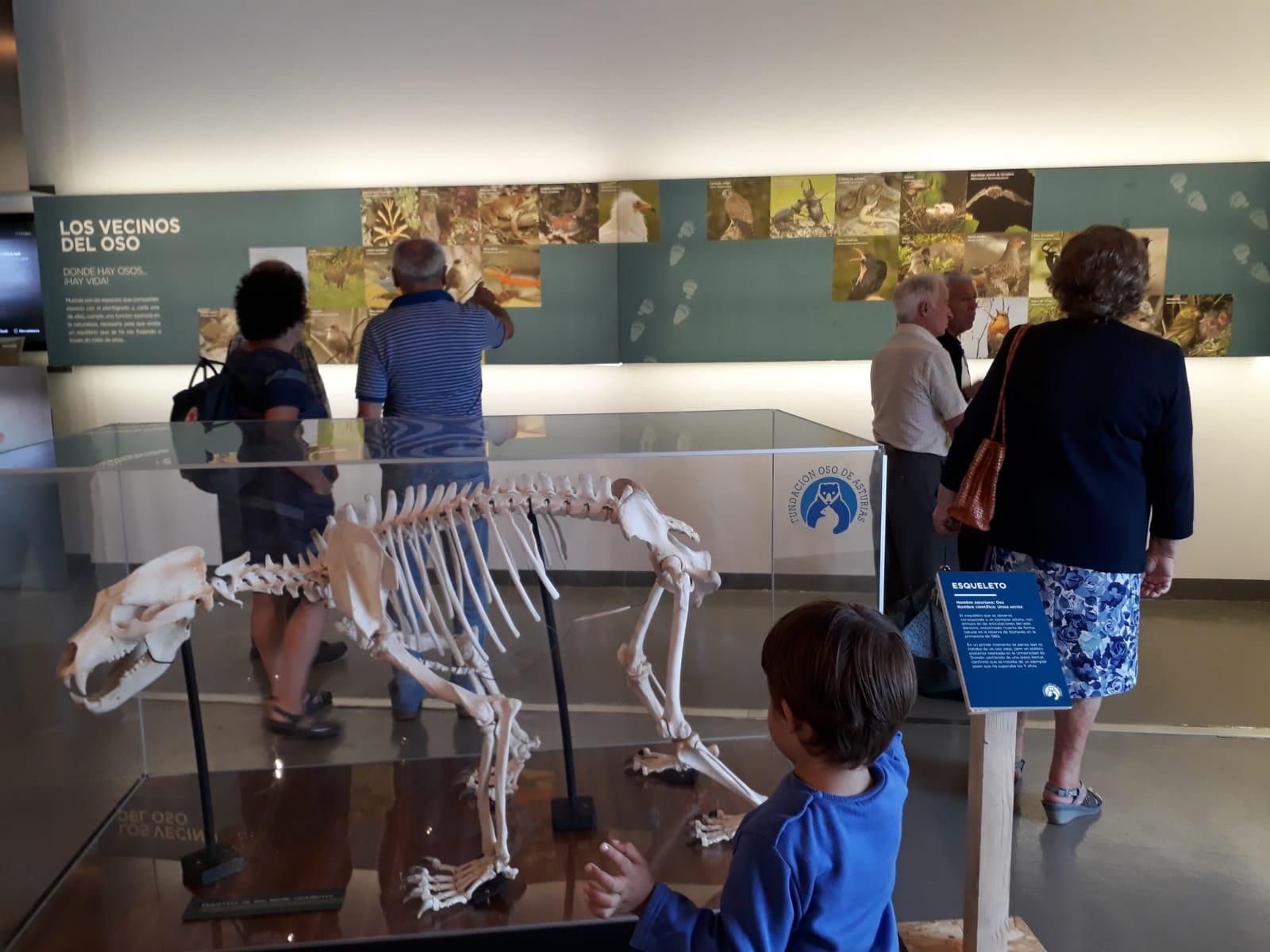 Gijón acoge en julio la exposición 'Vivir con osos'
