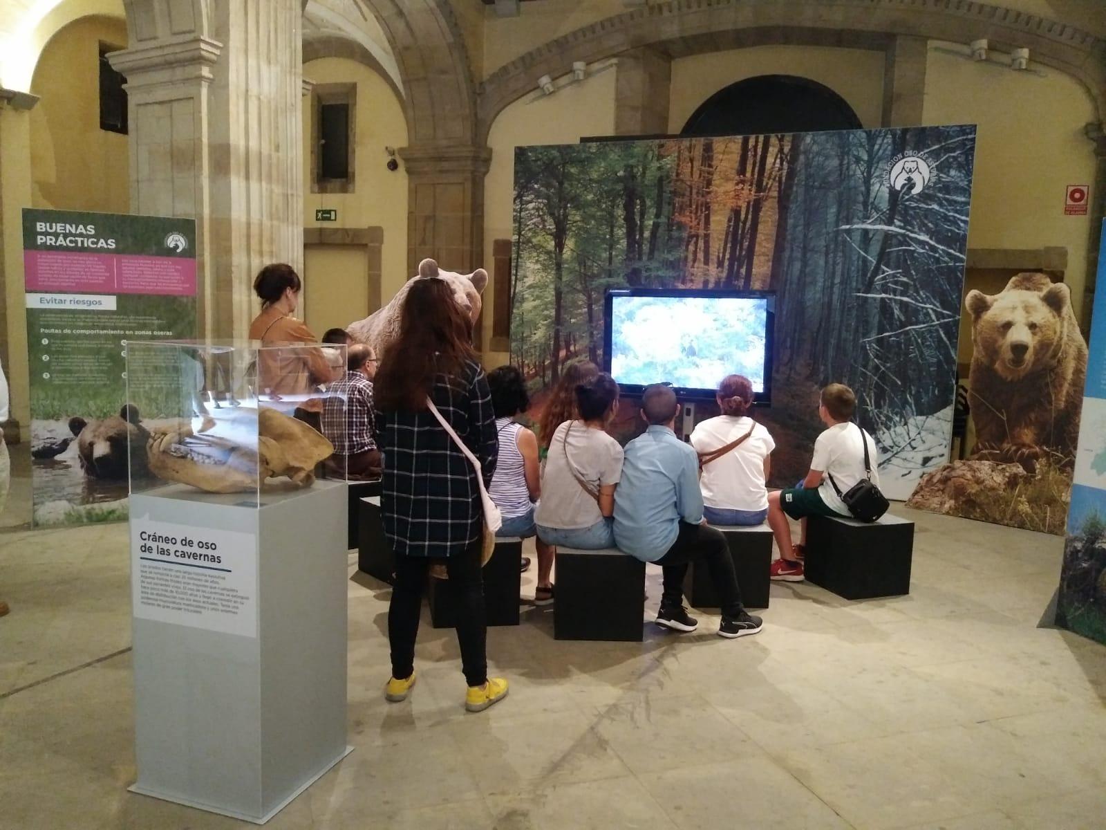 'Vivir con osos' concluye su estancia en la Colegiata San Juan Bautista de Gijón con más de 33.500 visitantes