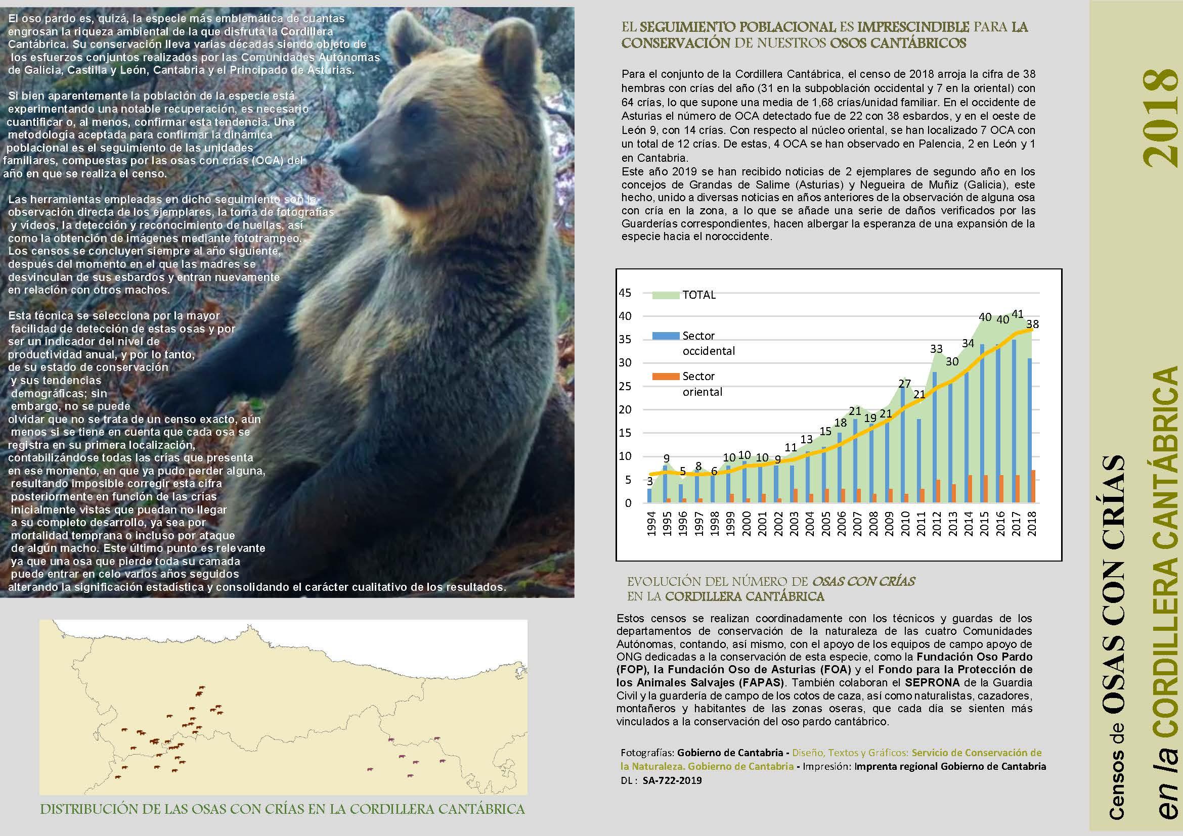 El nuevo censo osero ratifica la consolidación de la especie en la cordillera Cantábrica