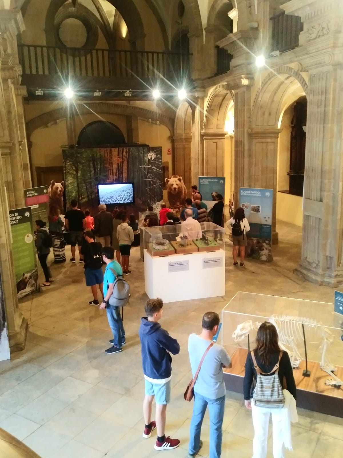 La exposición 'Osos' supera los 100.000 visitantes tras dos años de itinerario por Asturias