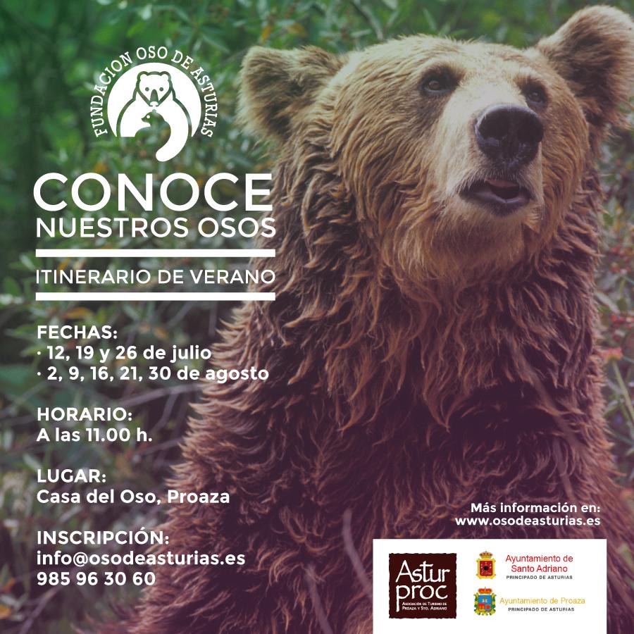 Asturias con niños: Conoce nuestros osos, el domingo