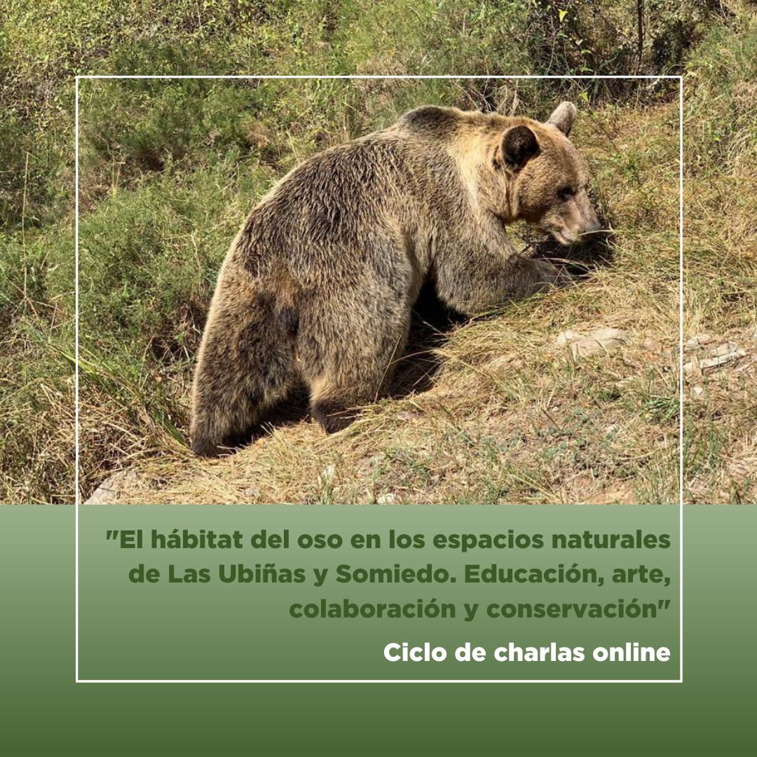 Ciclo de ocho charlas online sobre el hábitat del oso en los espacios naturales de Las Ubiñas y Somiedo