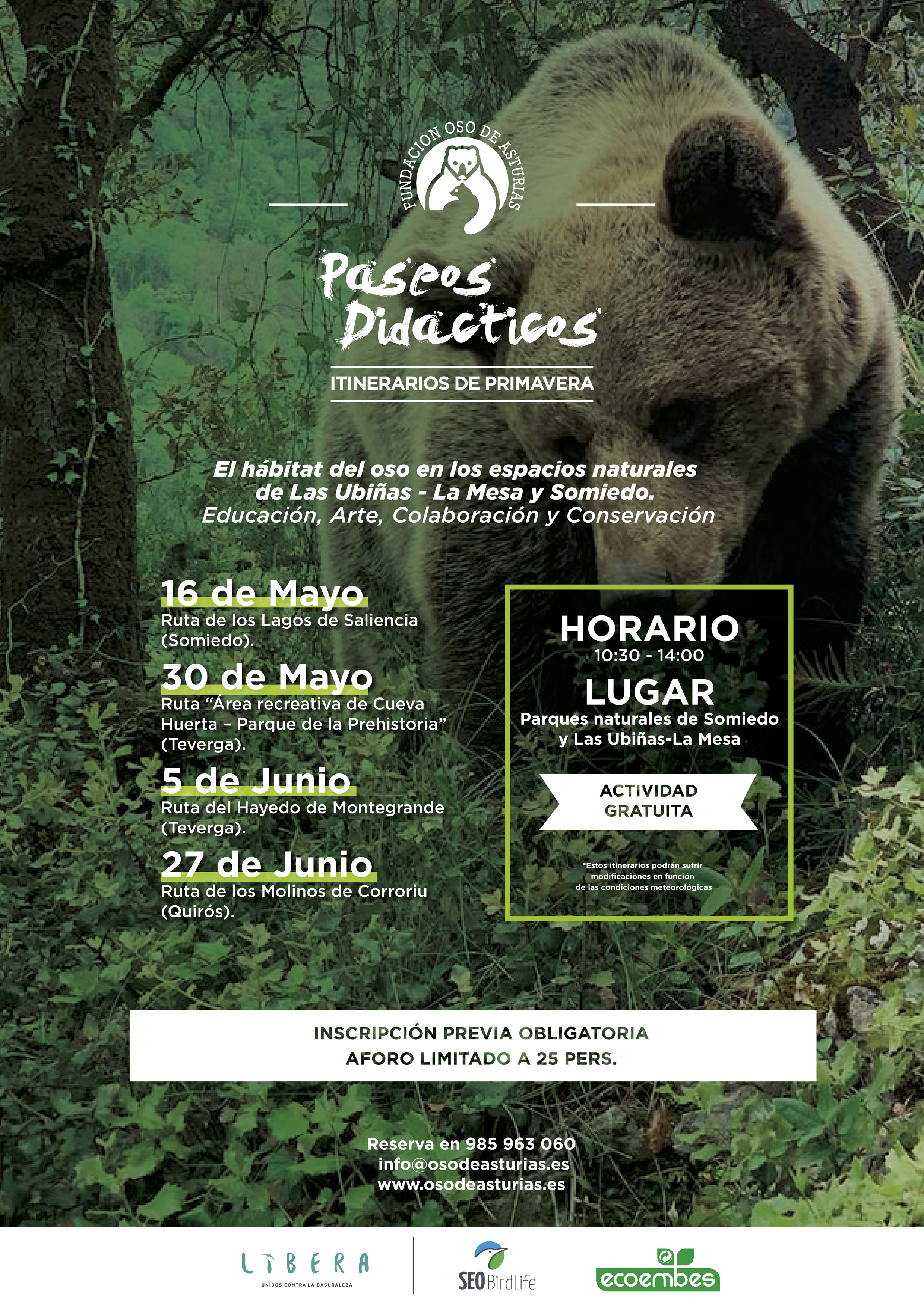 La Fundación Oso de Asturias retoma los 'Paseos didácticos' por la naturaleza