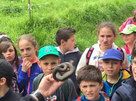 Actividades Educación Ambiental. Curso 2015-2016