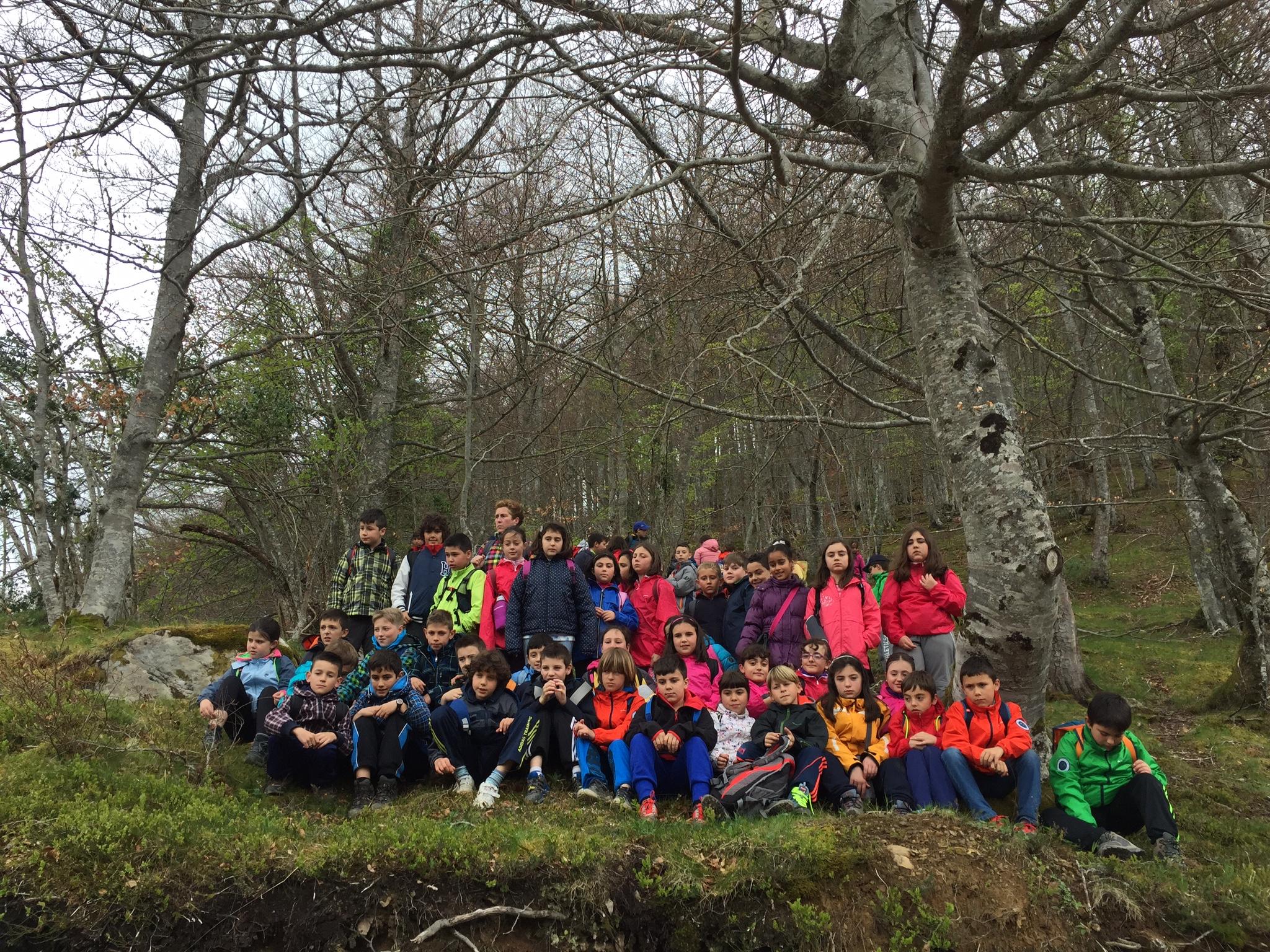 Nuevo éxito de participación en el Programa de Educación Ambiental