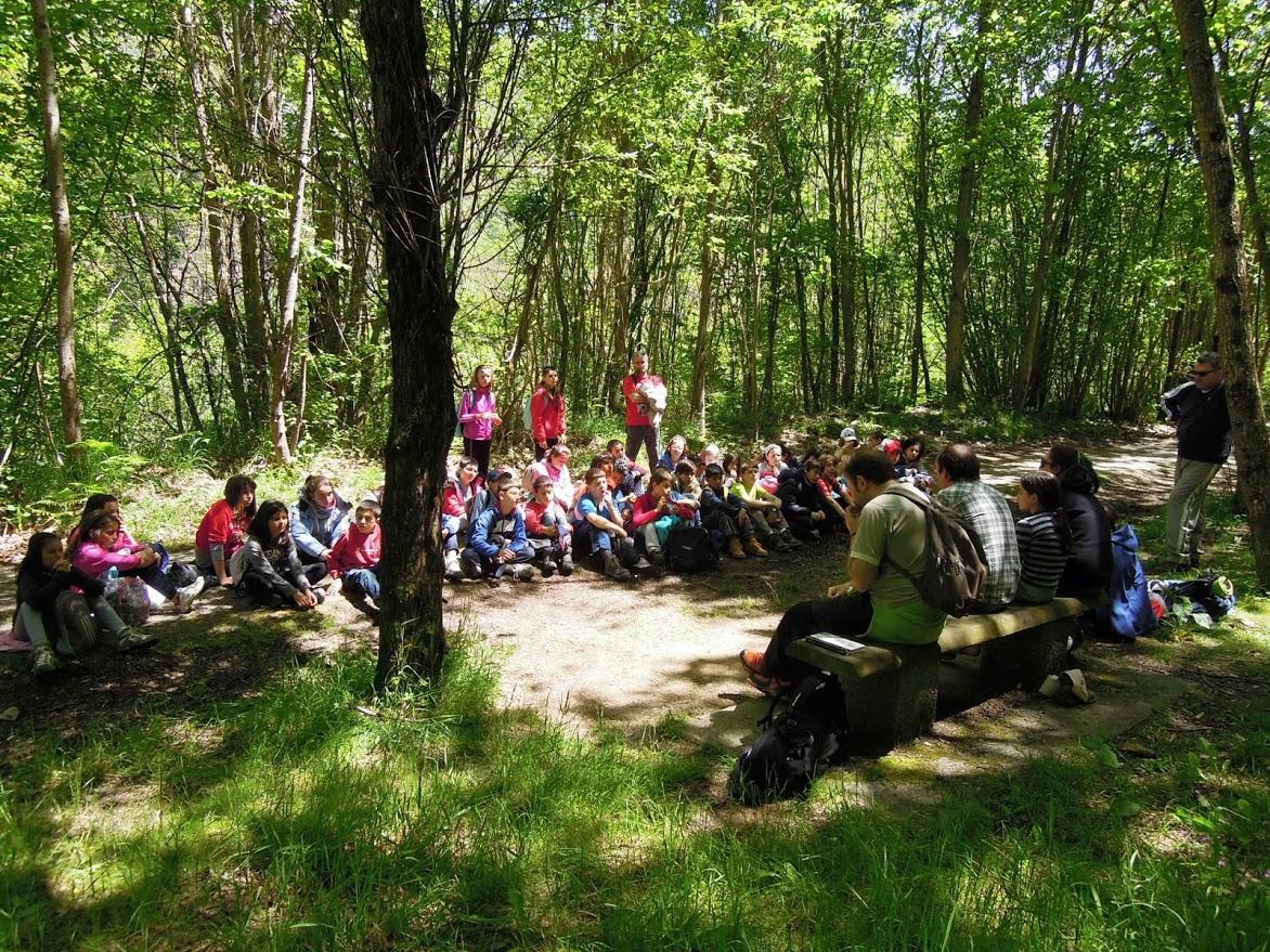 Ochocientos escolares participarán este año en el programa de educación ambiental